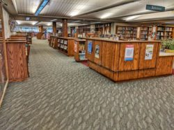 Chloride Community Library Jobs